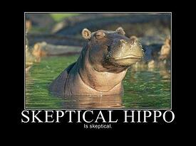 get-your-hippo-to-listen-to-your-B2B-marketing-ideas