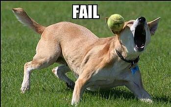b2b_website_fail_dog