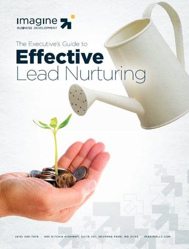 Lead-nurturing-ebook.png