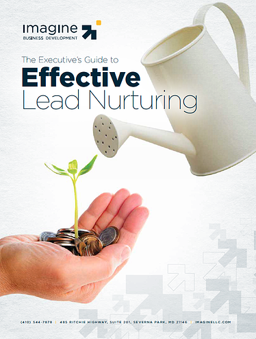 Lead-nurturing-ebook.png