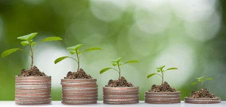 growth-strategies